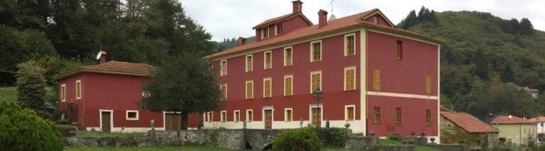 Palazzo breed